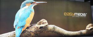 Spanntuchanlage mit Kolibri bei easymedia in Magdeburg